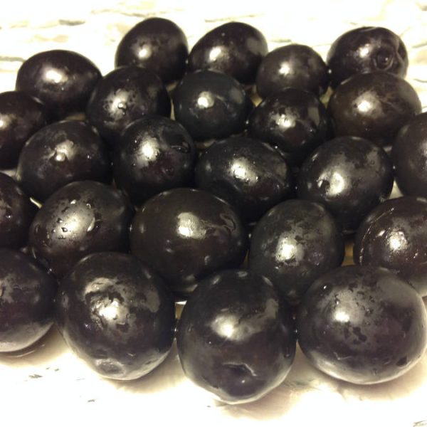 Olives Noire nature
