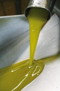 Extraction de l'huile d'olive - Montes de toledo