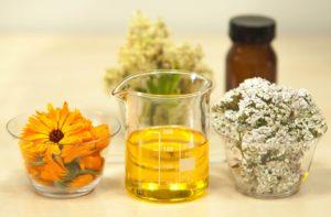 L'huile d'olive artisanale : retour à la base